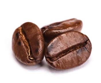 Wholesale-Coffee-Beans-Papa-New-Guinea
