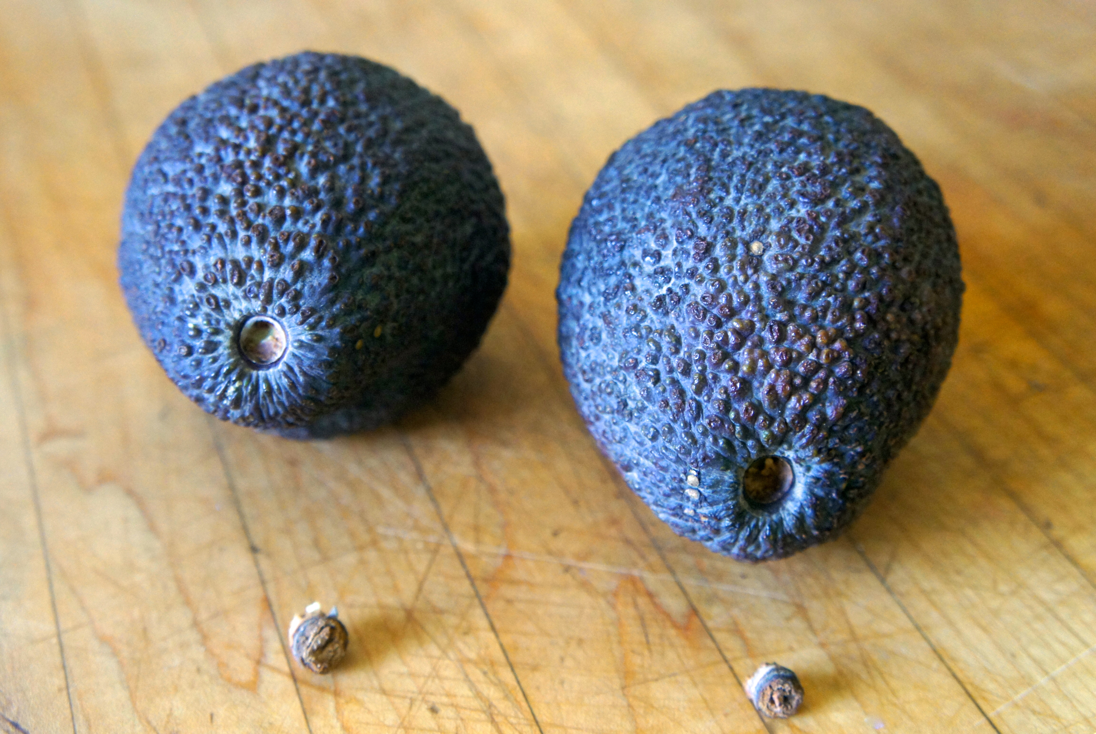 How can you tell if an avocado is rotten - answers.com