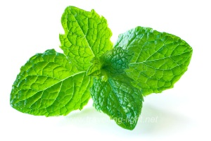 Mint & Lemon for Pimple Shrinkage