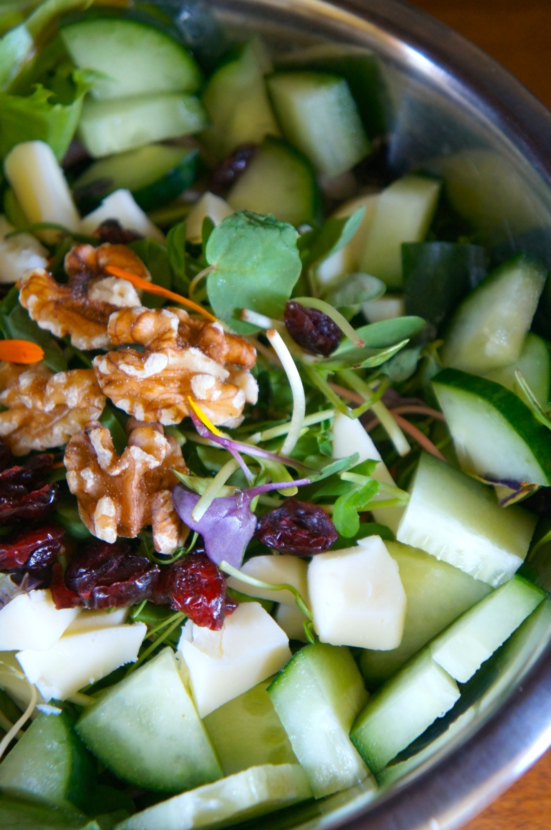 Cosmic Sprout Salad – Indulge Without Bulge